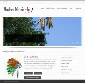 Modern Matriarchs - Saint Louis cleaning and more